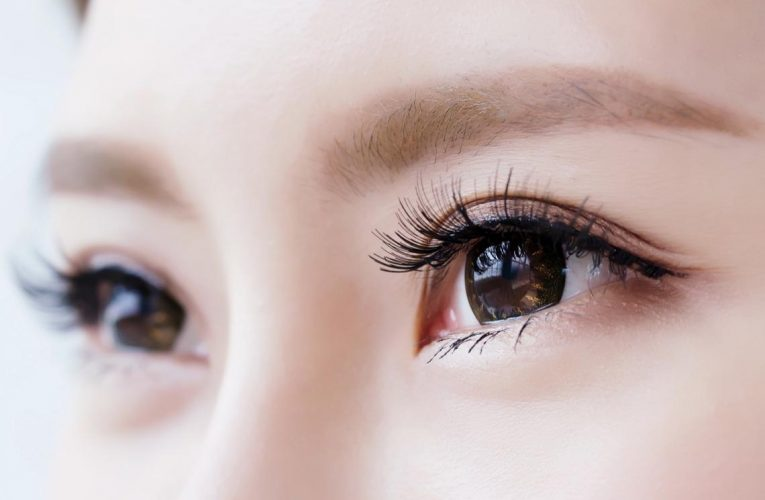 幾種眼科疾病 乾眼症和瞼緣炎. 過敏症. 角膜疾病